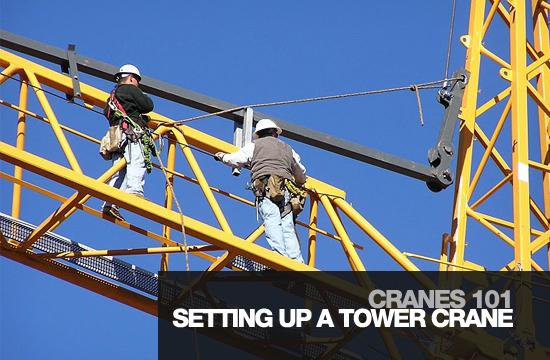 cranes-101-title