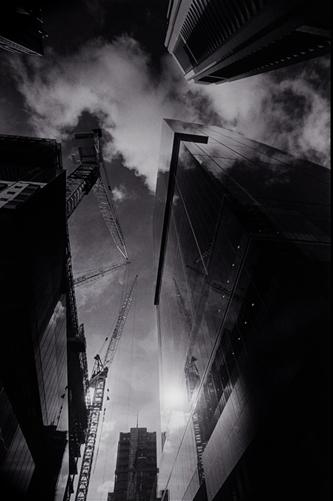 cool_crane8