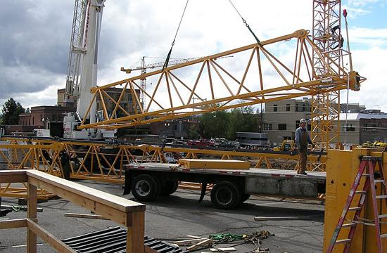 cranes-101-3