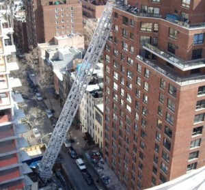 New York, Fallen Crane   March 15, 2008