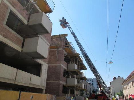 Crane Rescue 3