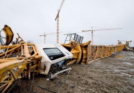 Heavy winds hit cranes b