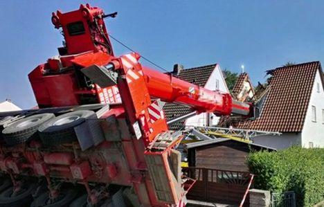 Dettelbach Crane 2