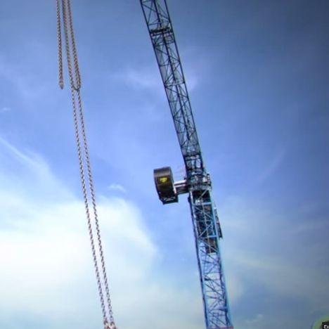 Singing Crane Operator 2